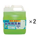 お得用台所用洗剤4L 2個セット